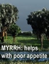 Ormus Minerals Frankincense & Myrrh Anointing Oil helps with poor appetite